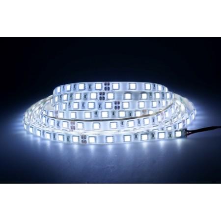 Герметичная светодиодная лента RTW-5060-SE-2x-300LED-24V-Warm/White/White-day/White-cool