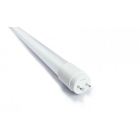 Лампа светодиодная  NN-YG0-T8 0050
